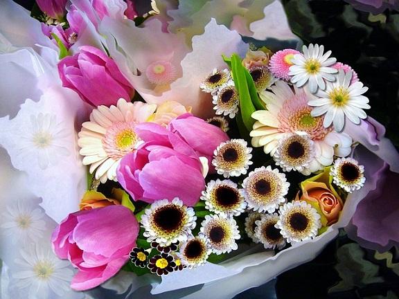 valentines-flower